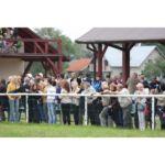 Wyścigi konne 31.05.2012